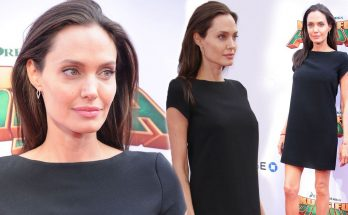 Angelina Jolie's Divorce Lawyer DIVORCES Her, Calls Her Ridiculous!