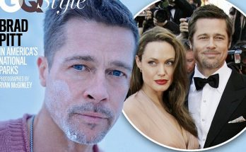 Brad Pitt Talks Quitting BOOZE AND ANGELINA JOLIE!