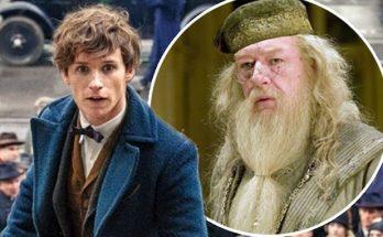 FANTASTIC BEASTS Director Confirms Dumbledore Appearance