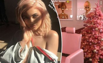 Kylie Jenner Hints at Her Baby's Gender in New Snapchat!