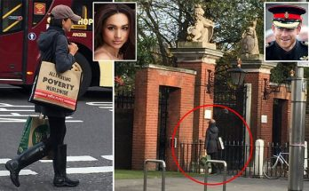 A 'SUIT'-ABLE FAIRYTALE: Meghan Markle Delivers Organic Groceries to Prince Harry!