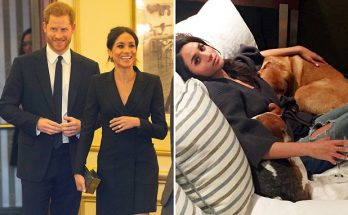 Meghan Markle Reveals Hers and Harry's Dog's Name!