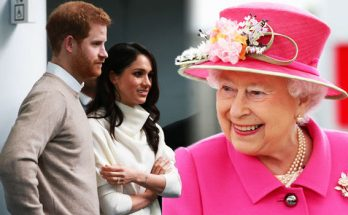 Prince Harry Says He PANICS When He Meets the Queen at Buckingham Palace