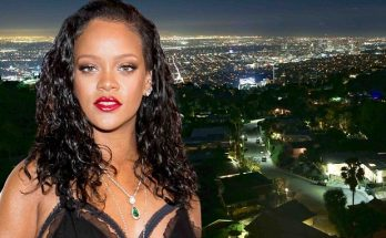 WHO'S THERE??? Alarm Goes Off at Rihanna's House!