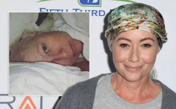 Shannen Doherty Celebrates 48th Birthday in Temporary Housing, In Legal Battle With Insurance Company State Farm