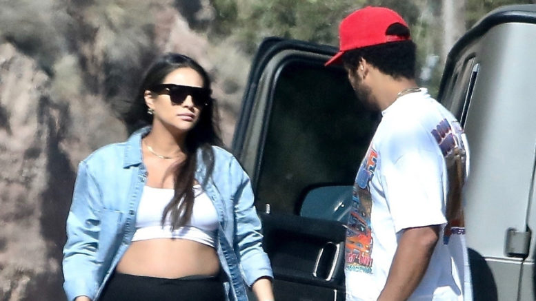 Pregnant Shay Mitchell Shows Belly in a CROP-TOP!