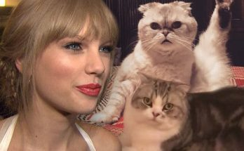 Taylor Swift Attends CATS Movie-Wrap Party
