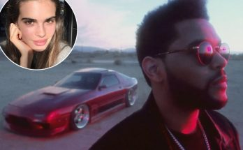 The WEEKND Flies Off a Cliff In New Video For 'PARTY MONSTER' With Zoe Mantzakanis